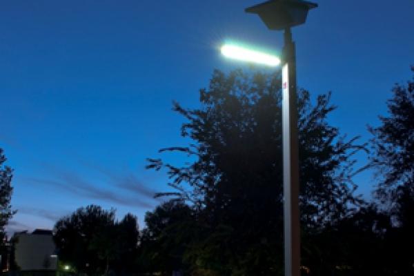 borre-zanardi-2012-lampione1F2748B0-824E-D929-3499-C16ADE88CA16.jpg